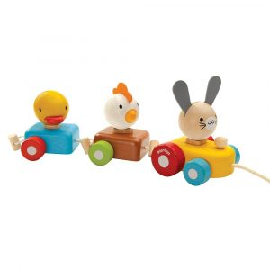 Plan Toys Animal Train Sorter