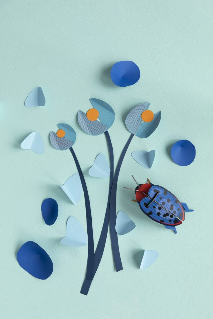Studio Roof Wall Decoration Puzzle Fungus Beetle