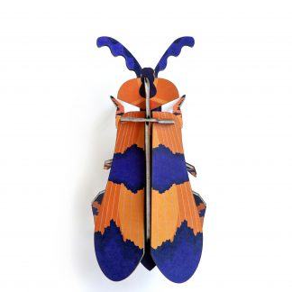 Studio Roof Wall Decoration Puzzle Winged Beetle