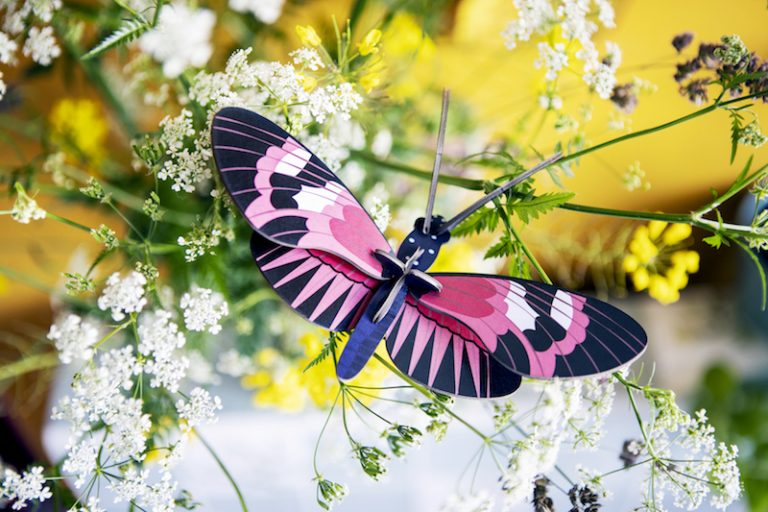 Studio Roof Wall Decoration Puzzle Longwing Butterfly