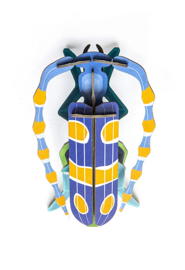 Studio Roof Wall Decoration Puzzle Rosalia Beetle