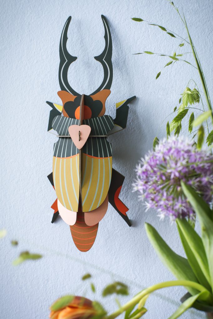 Studio Roof Wall Decoration Puzzle Giant Stag Beetle