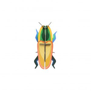 Studio Roof Wall Decoration Puzzle Madagascar Beetle