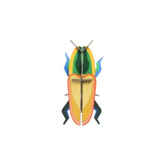 Studio Roof Wall Decoration Puzzle Madagascar Beetle
