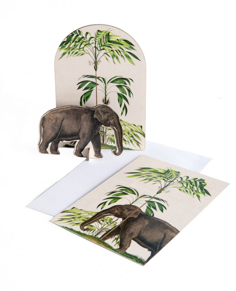 Studio Roof Pop Out Cards Tropical Elephant