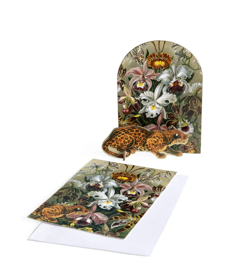 Studio Roof Pop Out Cards Extravaganza Leopard